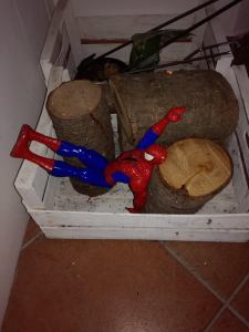 spiderman nella legna