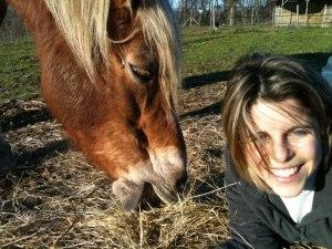 clio e cavallo