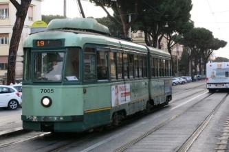 irene tram 19