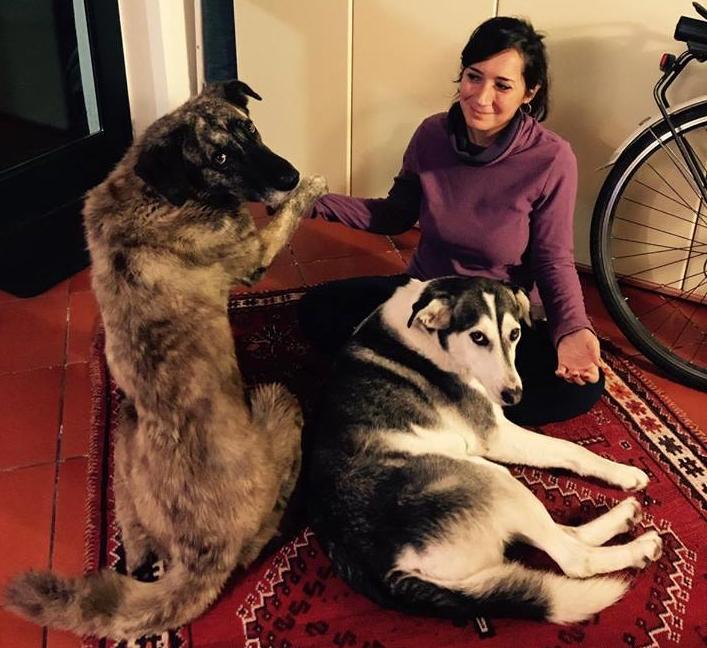claudia e i cani