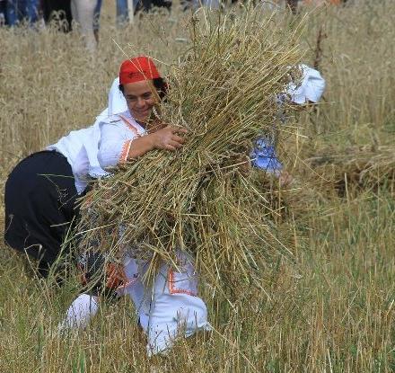 maria e il grano 2