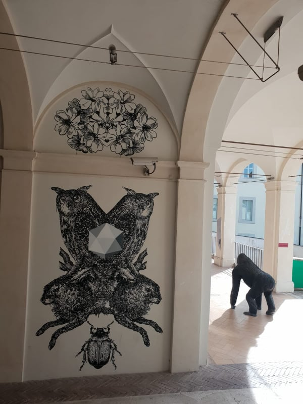 palazzo collicola 6