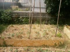 piero orti marano 2