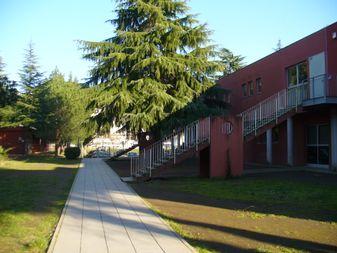 scuola torbella esterno verde