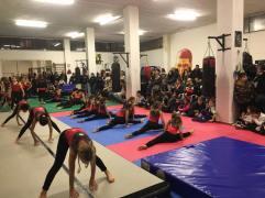 palestra ginnastica artistica